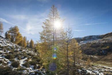 Alm-Chalet Auszeit, Karneralm, Salzburger Land